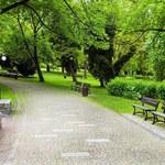 W polskich miastach ubywa parków