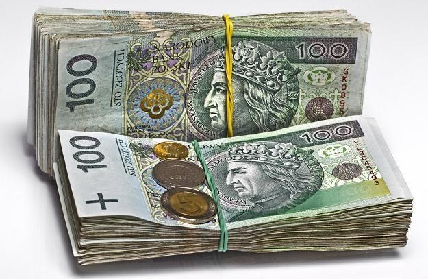 W poniedziałek złoty zyskał na wartości /Reporter