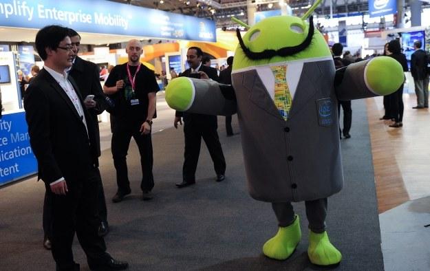 W portfolio Samsunga znajduje się ponad 100 smartfonów z Androidem /AFP