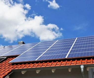 W poszukiwaniu tańszego prądu. Zielona energia zdobywa Polskę