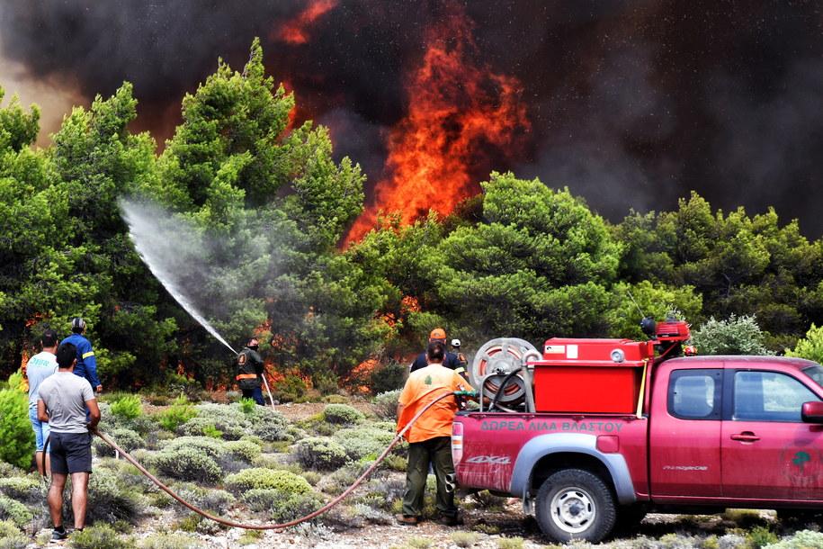 W pożarach zginęły co najmniej 74 osoby /VASSILIS PSOMAS   /PAP/EPA