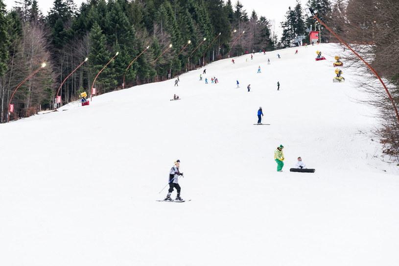W Predeal każdy znajdzie odpowiedni dla siebie stok narciarski /123RF/PICSEL