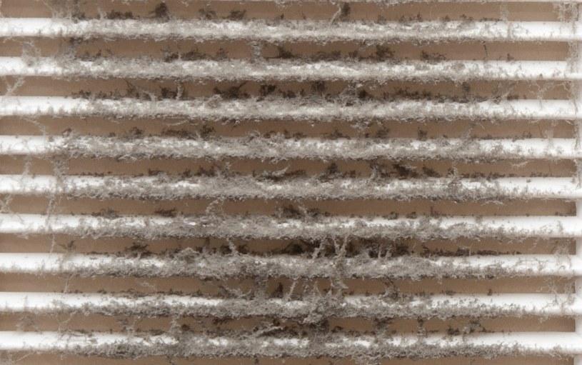 W przestrzeniach kratki gromadzą się kurz, brud, roztocza i inne alergeny /123RF/PICSEL