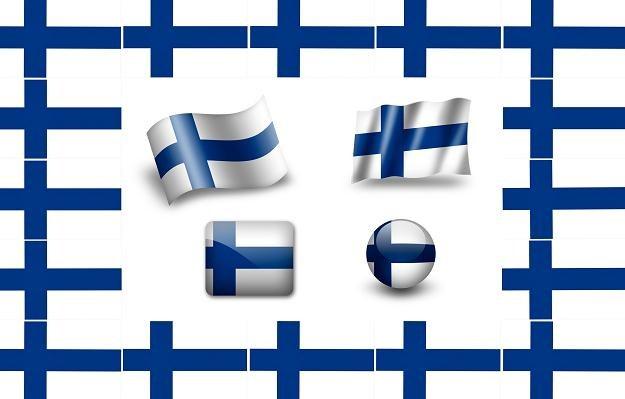 W przypadku rozpadu strefy euro, pierwsza opuściłaby ją Finlandia? /©123RF/PICSEL
