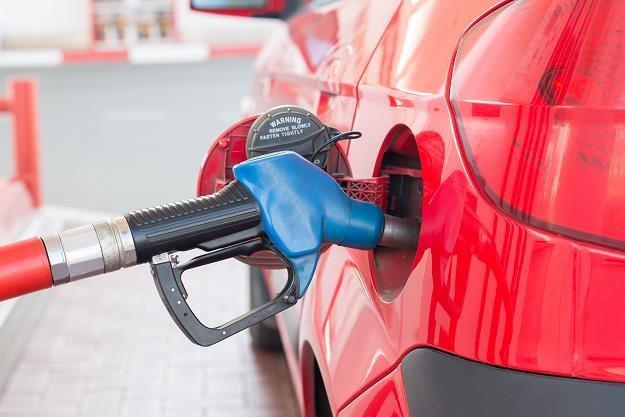 W przyszłym roku będzie wyższa opłata paliwowa /©123RF/PICSEL