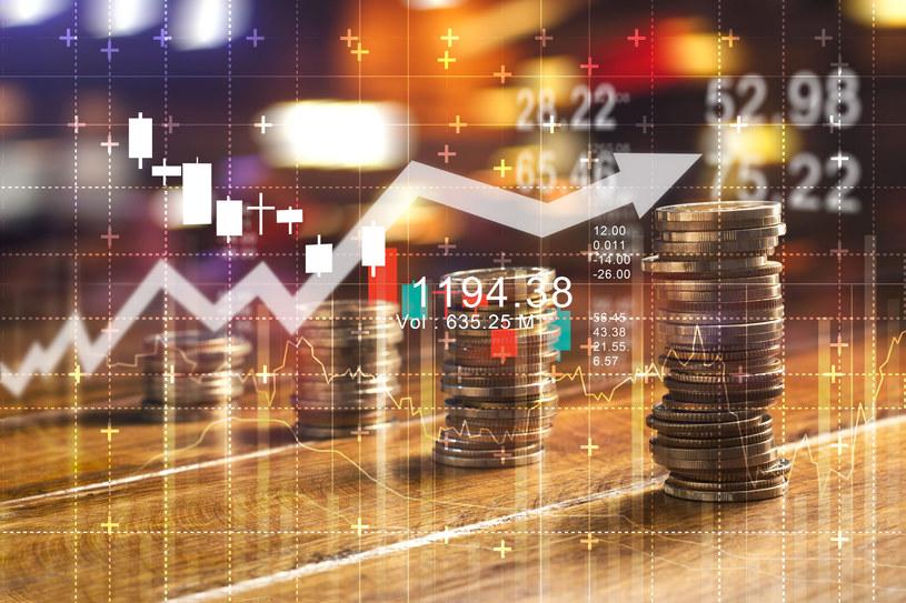 W przyszłym roku nie powinniśmy spodziewać się drastycznych podwyżek cen /123RF/PICSEL