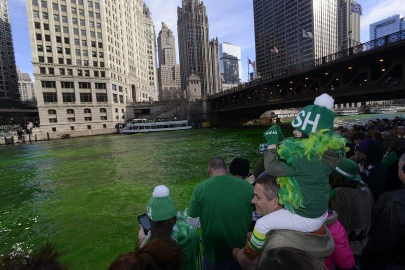 W ramach święta rzeka przepływająca przez Chicago została zabarwiona na zielono /East News