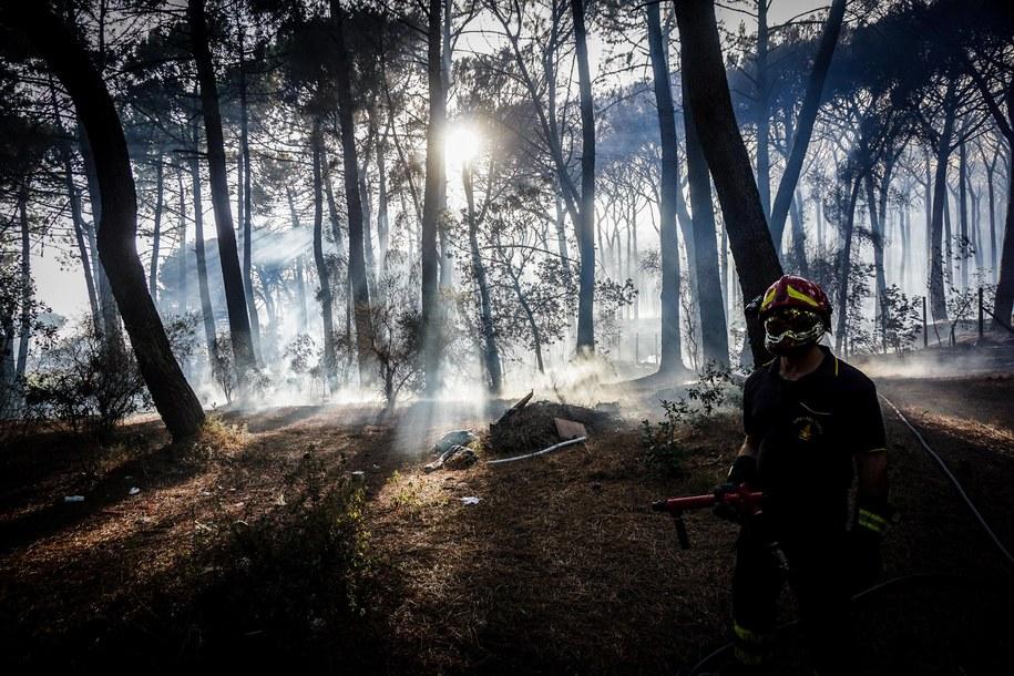 W rejonie Wezuwiusza koło Neapolu kolejny dzień z rzędu trwa walka z pożarem na zboczach wulkanu /CESARE ABBATE /PAP/EPA