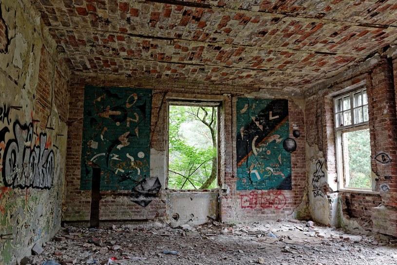 W ruinach dawnego szpitala psychiatrycznego mają snuć się ofiary masowego mordu /Maciek Markowski /Agencja FORUM