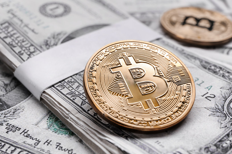 W Salwadorze można płacić amerykańskimi dolarami oraz... bitcoinami /123RF/PICSEL