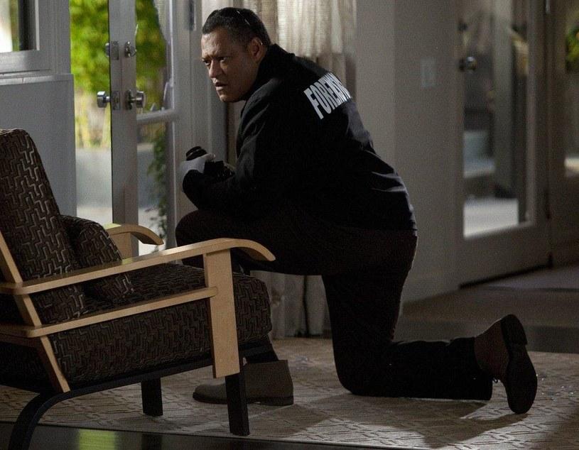 """W serialu """"CSI: Kryminalne zagadki Las Vegas"""" wcielił się w doktora Raymonda Langstona /materiały prasowe"""