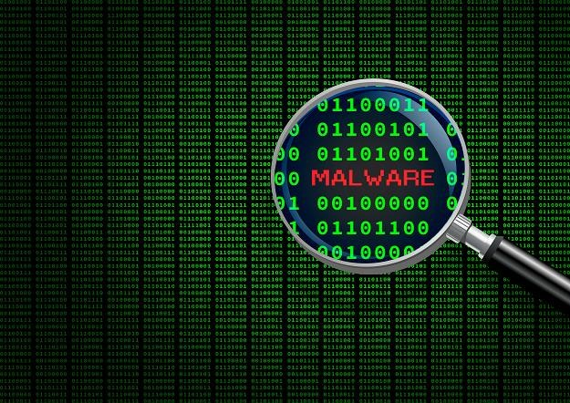 W sieci każdy może stać się ofiarą ataku malware /©123RF/PICSEL