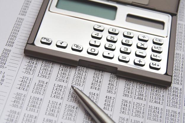 W skali 2013 roku dochody będą niższe o ok. 24 mld zł, a deficyt budżetowy wzrośnie o 16 mld zł /© Panthermedia
