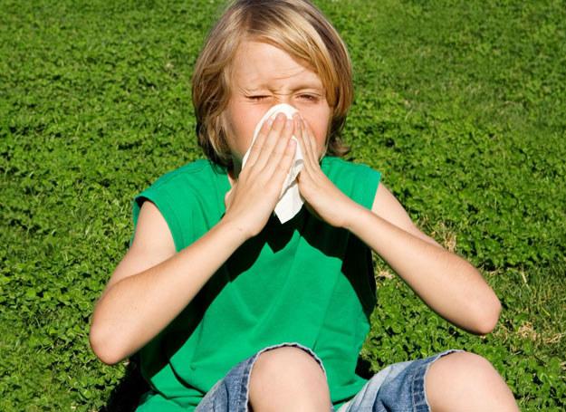 W słoneczne, ciepłe dni unikaj otwierania okien. Mieszkanie wietrz po zmroku. /123RF/PICSEL