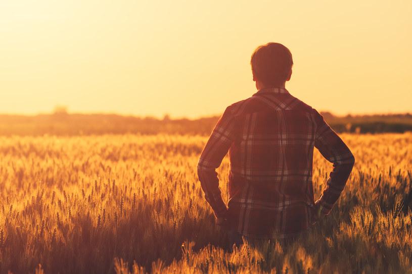 W spisie rolnym wzięło już udział blisko 50 tys. rolników /123RF/PICSEL