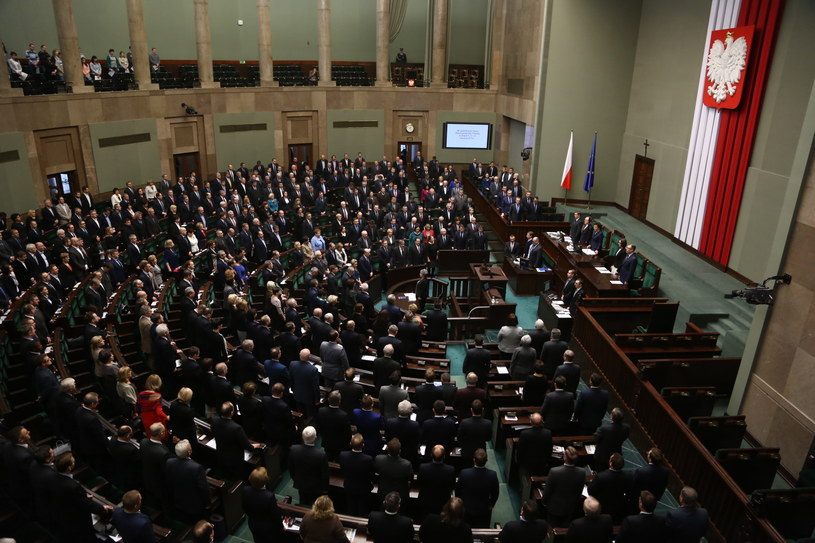 W środę premier oświadczył, że Lasy Państwowe nie zostaną. /Tomasz Gzell /PAP