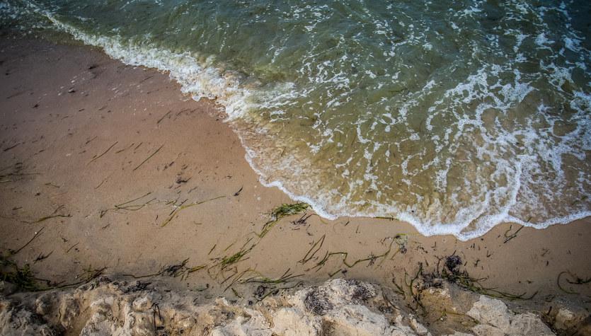 W śródlądowych wodach zaczyna brakować tlenu