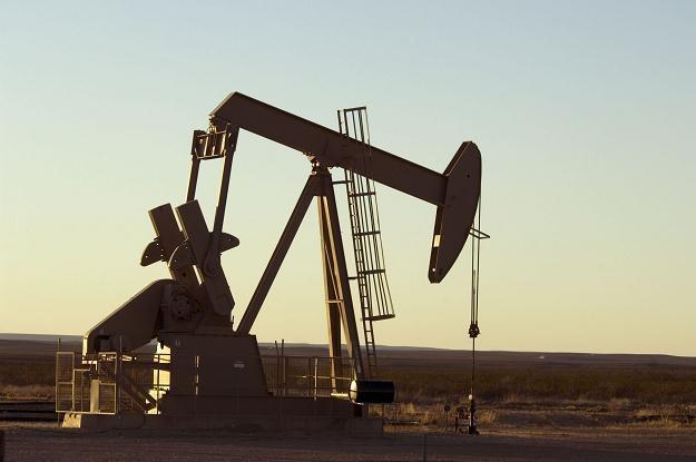 W Stanach wydobywa się 6,41 mln baryłek ropy dziennie /©123RF/PICSEL