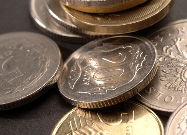 W stosunku do porannego otwarcia złoty osłabił się w ciągu dnia o 2 grosze /© Bauer