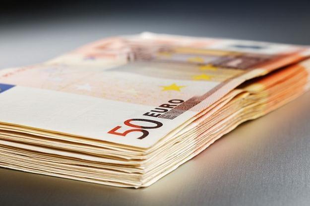 W strefie euro znajdziemy się najwcześniej po 2020 roku /©123RF/PICSEL