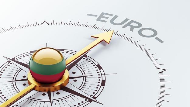 W styczniu 2015 r. Litwa dołączy do strefy euro /©123RF/PICSEL