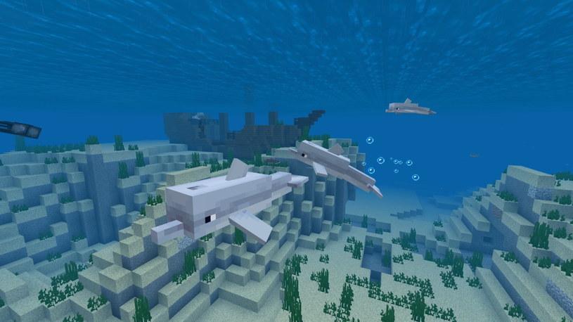 """W świecie """"Minecrafta"""" możemy rozwijać swoją kreatywność /materiały prasowe"""