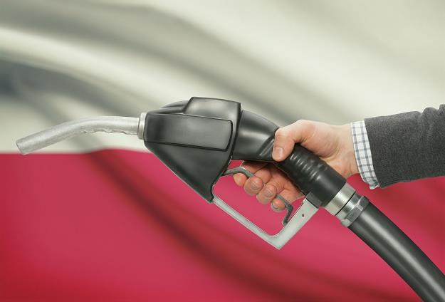W święto będą mogły być otwarte wszystkie stacje paliw, a w niedzielę - tylko niektóre /©123RF/PICSEL
