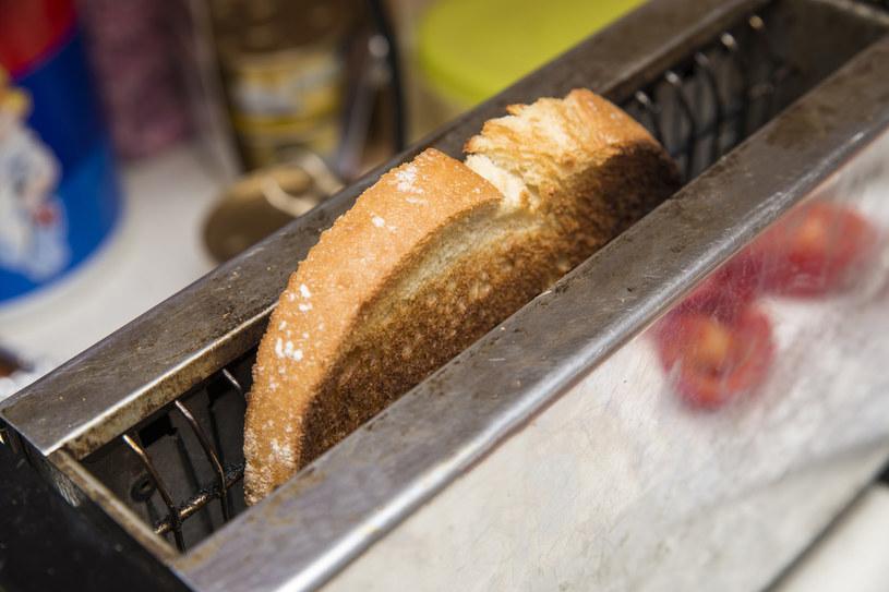 W szparach tostera mogą zalegnąć się larwy robaków... /123RF/PICSEL
