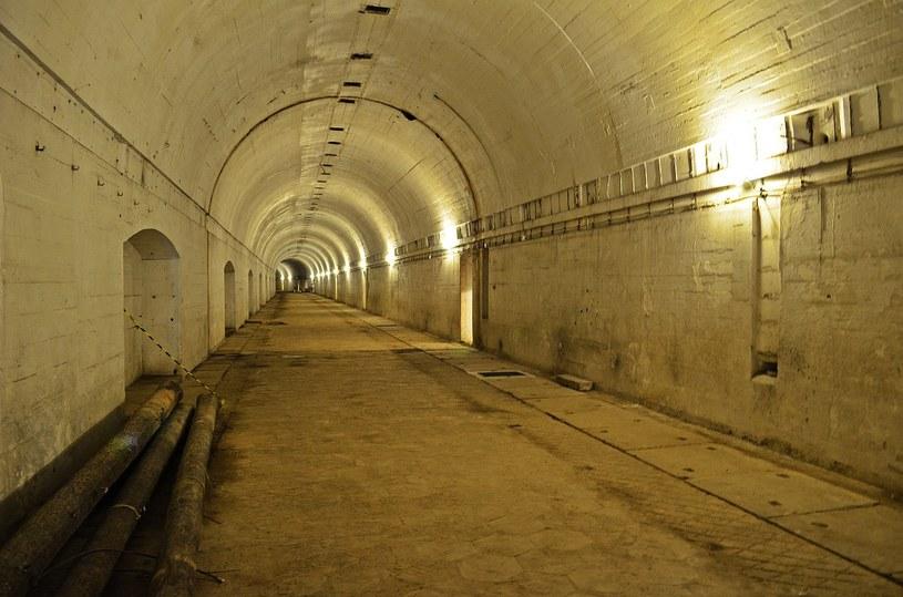 W Szwajcarii miejsc w bunkrach jest więcej niż samych Szwajcarów /Pixabay.com