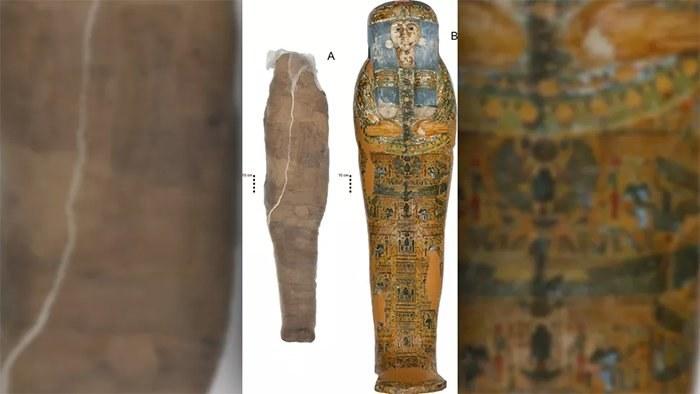 W takich sarkofagach zazwyczaj nie chowano mumii błotnych /materiały prasowe