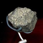 W Tanzanii odkryto ślady ludzi sprzed 2 mln lat