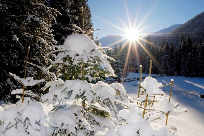 W Tatrach już zima /Adrian Gladecki /Reporter