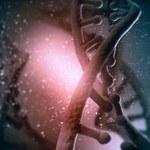 W trzeciej wojnie światowej pojawi się broń genetyczna zabijająca konkretne nacje?