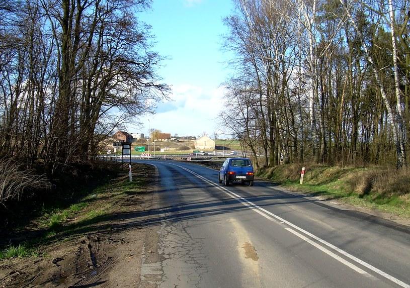 W tym miejscu koło Skokówka  – według Jacka Glenowicza – miał nastąpić 22 lutego 1944 roku napad na konwój SS. Zdjęcie z 2008 roku /