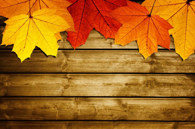 W tym roku astronomiczna jesień zacznie się nocą /123RF/PICSEL