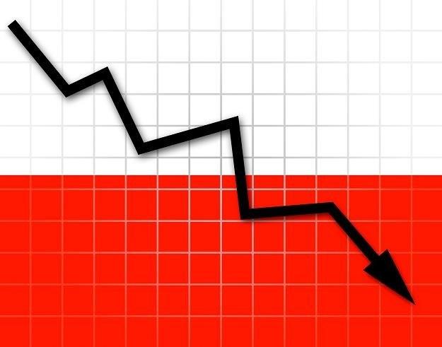 W tym roku deficyt finansów publicznych może przekroczyć 10 proc. PKB /123RF/PICSEL