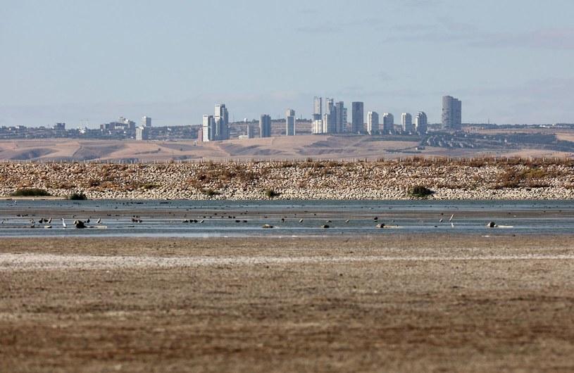 W tym roku ekstremalne susze dotknęły m.in. Turcji /ADEM ALTAN /AFP