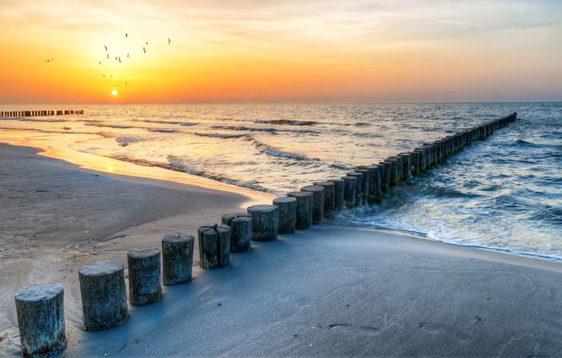 W tym roku Godzina dla Ziemi zwraca naszą uwagę na umierający Bałtyk /123RF/PICSEL