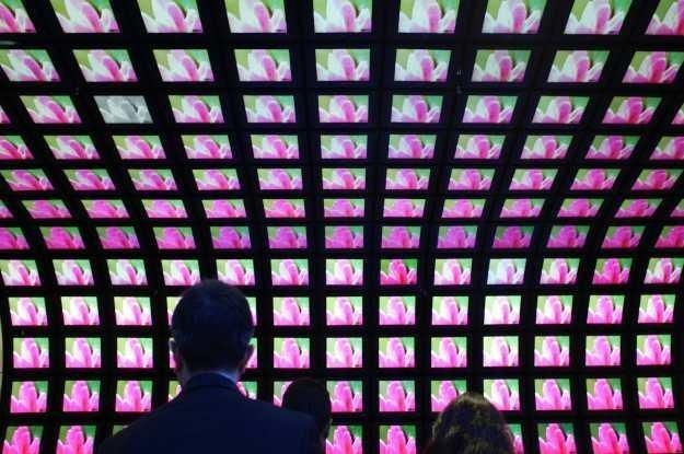 W tym roku nie zabraknie nowych kanałów telewizyjnych /AFP