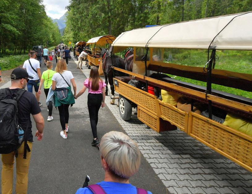 W tym roku polskie góry przeżyły oblężenie turystów. Niestety, nie brakowało wśród nich wandali /pawel murzyn /East News