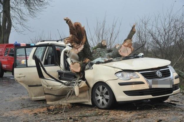 W tym samochodzie zginęły trzy osoby / Fot: Hubert Bierndgarski /INTERIA.PL