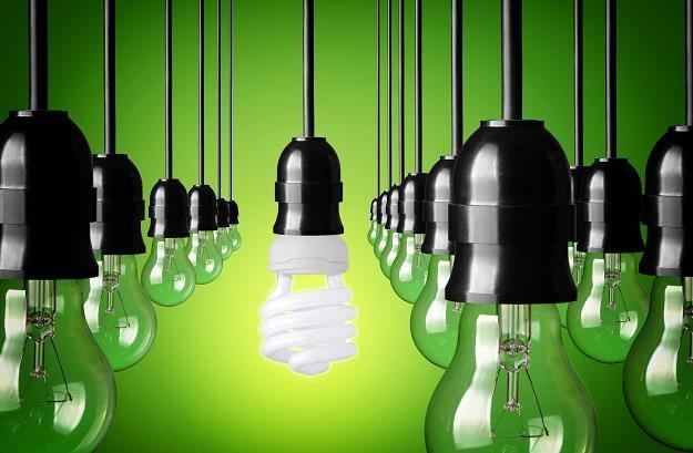 W Unii będzie nowe oznakowanie energooszczędnych produktów /©123RF/PICSEL