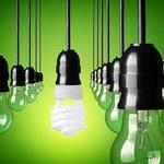 W Unii będzie nowe oznakowanie energooszczędnych produktów
