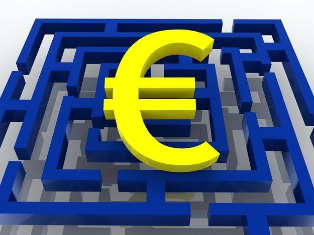W Unii Europejskiej widać głębokie podziały /©123RF/PICSEL