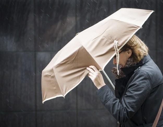 W weekend będzie chłodniej. Będzie też padać /Wiktor Dabkowski    /PAP