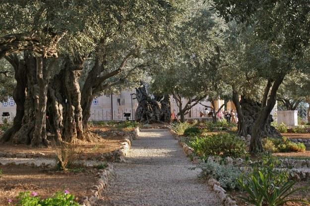 W Wielki Piątek zabieramy Was też do miasta, w którym Jezus Chrystus odbył swoją ostatnią ziemską drogę /Luay Sababa /PAP/Photoshot