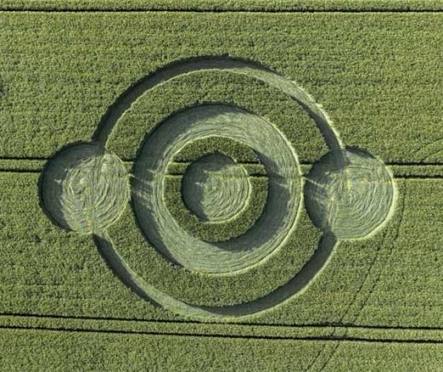 W Wielkiej Brytanii zaobserwowano pierwsze w tym roku kręgi w zbożu /materiały prasowe