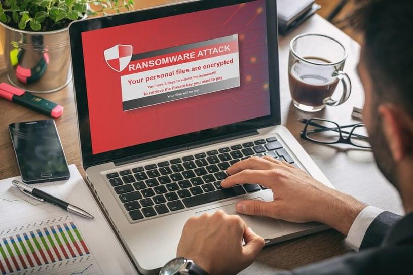 W wyniku ataku zostały zaszyfrowane cenne dane znajdujące się w miejskiej sieci komputerowej /123RF/PICSEL