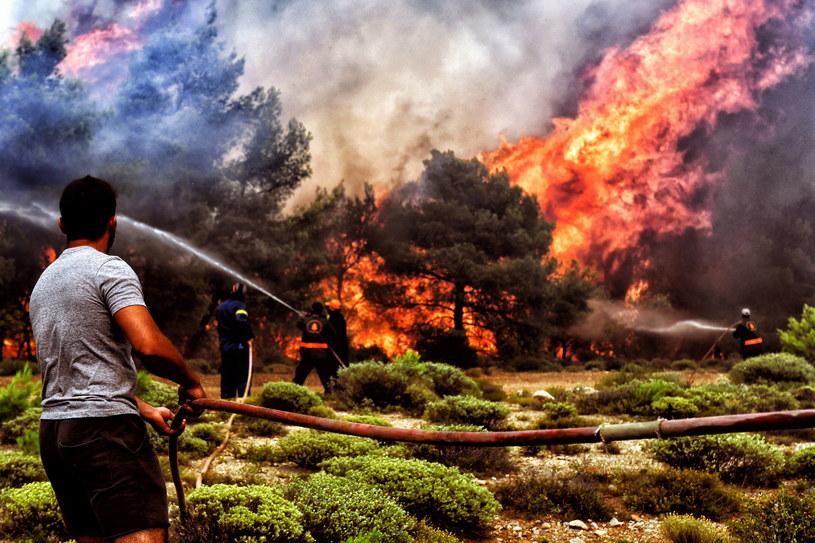 W wyniku tragicznych pożarów w Grecji zginęło 91 osób, a dziesiątki wciąż uznawane są za zaginione /VASSILIS PSOMAS   /PAP/EPA