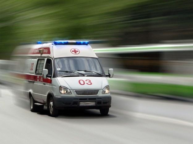 W wypadku śmierć poniosła jedna osoba /123RF/PICSEL
